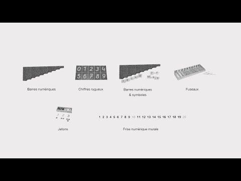 Lhydropompe pour laugmentation du membre
