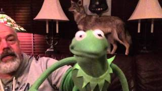 Kermit the Frog attempts a Bajan accent Howd he do Includes a