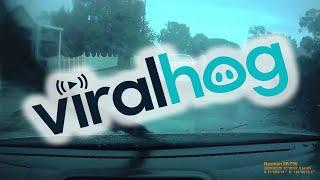 videos de risa aterrador - el árbol cae sobre el auto