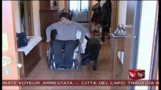 Il TG2 RAI dedica un servizio alla bella storia di Alessandra e Lulù