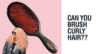 Can You Brush Curly Hair? Hair Romance Good Hair Q&A #4