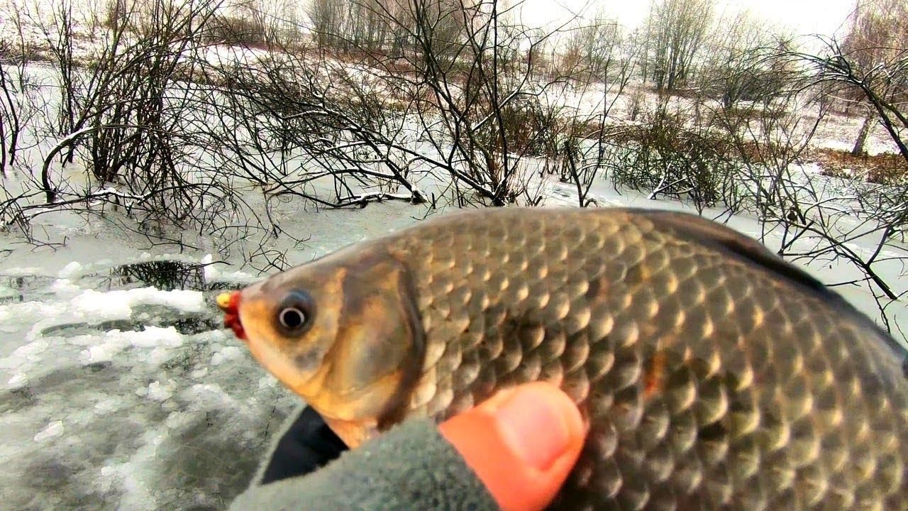Рыбалка советы от михалыча