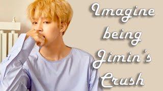 Imagine  BTS Jimin has a crush on you