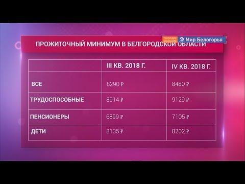 Вырос прожиточный минимум в Белгородской области