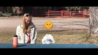 Weather Lesson (Kindergarten Virtual Field Trip)