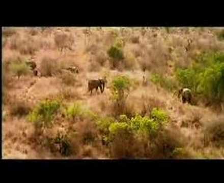 Kenia Deel 1