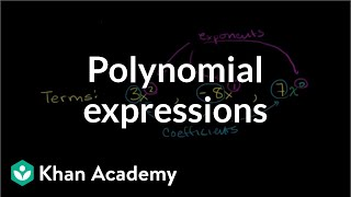 Terms coefficients and exponents in a polynomial