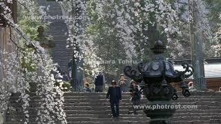 妙義神社の動画素材と4K写真素材