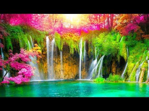 Relaxing Music 24/7, Sleep Music, Meditation, Healing, Zen, Calming Music, Yoga, Relax, Sleep, Study