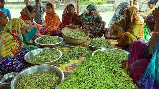Did You Ever Try This Hodgepodge? Green Peas Tasty Hodgepodge Cooking For Whole Village People