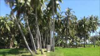 Paradis Øen - Siquijor