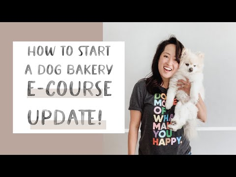 How to Start a Dog Bakery E-Course Update! - YouTube