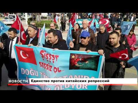 11.02.2019 Главные новости дня ETIC