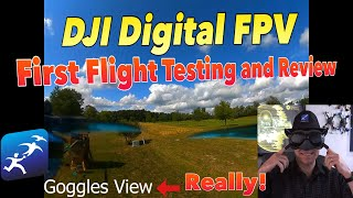 DJI Digital FPV Goggles System Review – Flight Testing and Analog Comparison