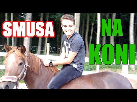 Smusa na koni