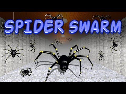Video of Spider Swarm