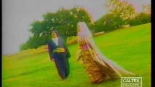 Kavooki Music Video
