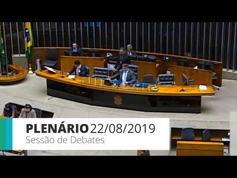 Plenário - Sessão de debates - 22/08/2019 - 14:00