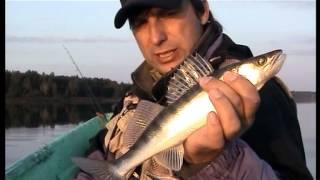 Канал россия 2 диалоги о рыбалке