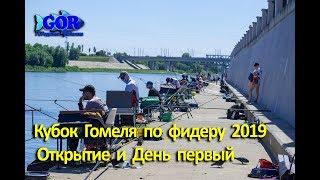Одесса соревнования по рыбной ловле в беларуси 2020