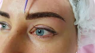 Density Eyebrows Microblading by El Truchan @ Perfect Definition