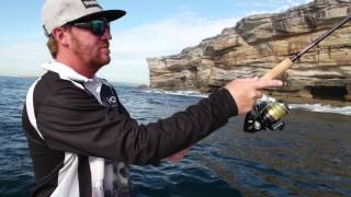 b38190eda09 Shimano Sienna 4000FE Spinning Fishing Reel - DINGA