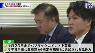 1月8 びわ湖放送ニュース