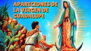 Apariciones de Nuestra Señora de Guadalupe
