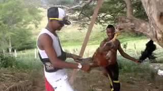 Como matar una gallina