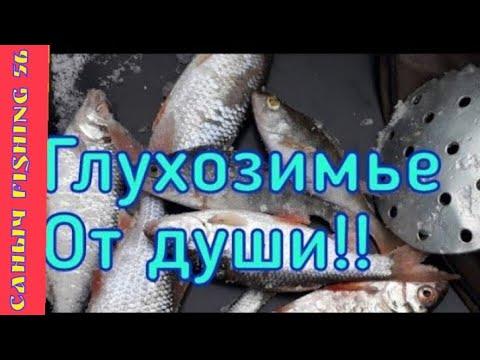 ЗИМНЯЯ РЫБАЛКА/Жор В ГЛУХОЗИМЬЕ/deep-sea fishing