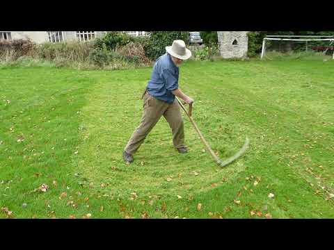 Man mows lawn with a scythe