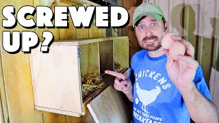 Nesting Box For Chickens. Our BIG MISTAKE That You Should Avoid!