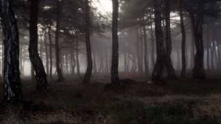 Cure - A Forest video