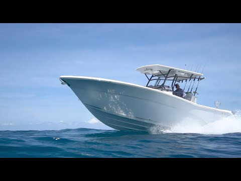 Sea Fox 288 Commander video