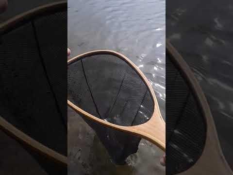 Attivazione del russo che pesca 3