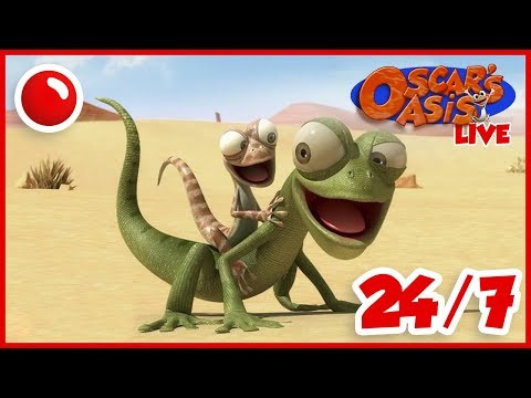 NEW Oscar's Oasis - HD Live Stream Full Episodes 24/7 🔴 Mp3