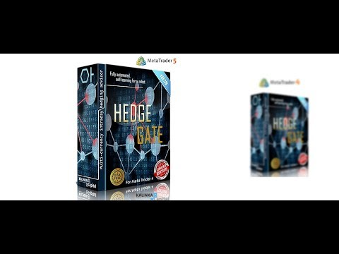 HEDGE GATE profit 40 000% 2015 - 2018 year