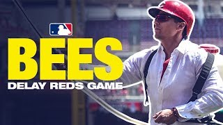 Bees delay Reds game, Dietrich 'helps' out