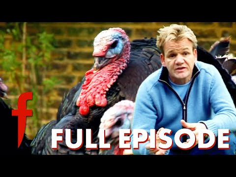 , title : 'Gordon Ramsay Slaughters His Garden Raised Turkeys    The F Word with Foxy Games