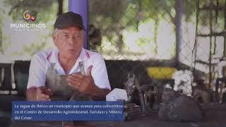 TV MUNICIPIOS – LA JAGUA DE IBIRICO EN EL CESAR TRABAJA POR SU PATRIMONIO