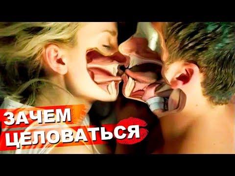 Зачем мы Целуемся? / Поцелуи - что это? 💋