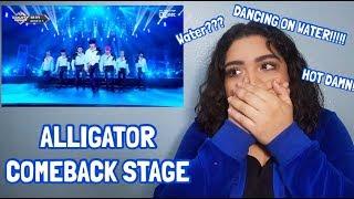 Monsta X  Alligator' Comeback Stage  Performance Reaction