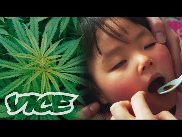 大麻で難病を治す「医療大麻」最前線
