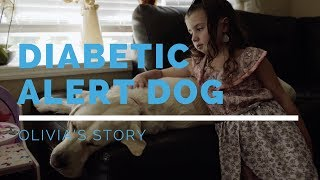 Diabetic Alert Dog Feature: Olivia's Story