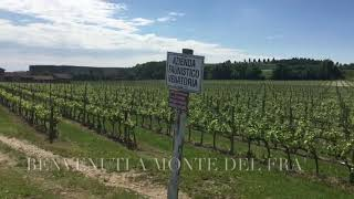 YouTube: Monte del Frà Custoza