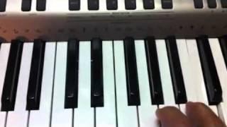 Tu hoc dan organ :thuc hanh chu am va hop am