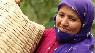 Rapunzel Türkei Projekt: Hier kommen die Bio-Haselnüsse her
