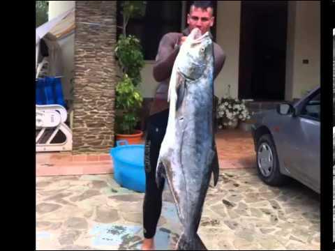 Comprare in vestiti SPb per pesca