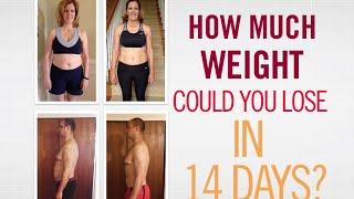 Zero belly diet pdf free download