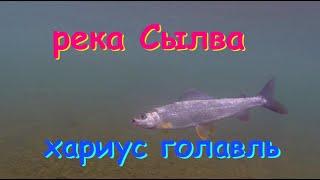 Рыбалка в перми на реке сылва